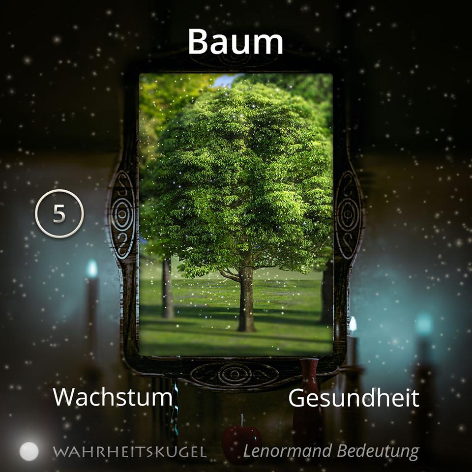 Bedeutung der Lenormandkarte 5 - Baum